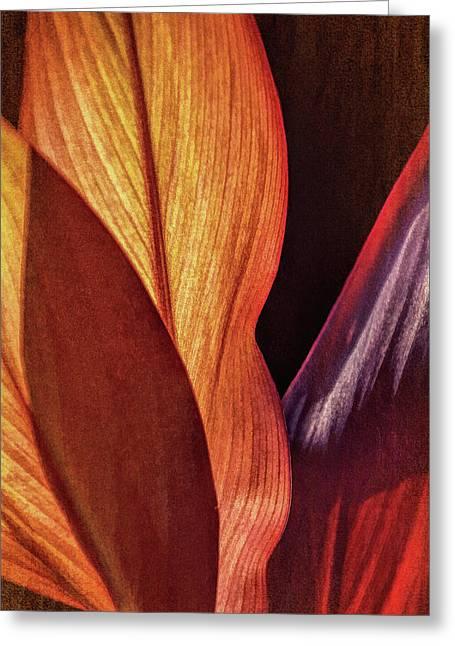 Interweaving Leaves I Greeting Card