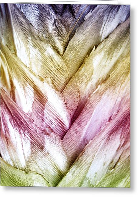 Interwoven Hues Greeting Card by Holly Kempe