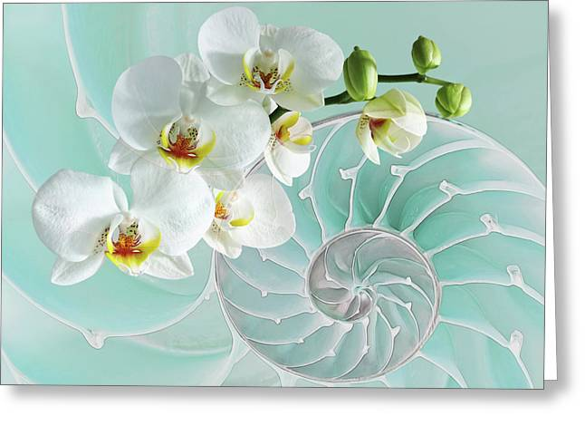 Intimate Fusion In Turquoise Greeting Card by Gill Billington