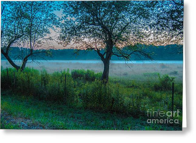 Into The Mist Greeting Card by Sabrina Ramina