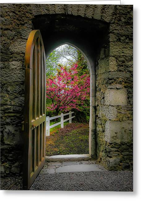 Greeting Card featuring the photograph Into Irish Spring by James Truett