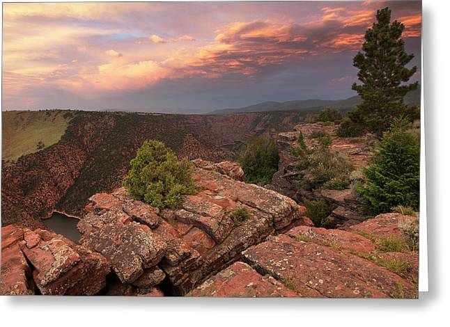 Into Red Canyon Greeting Card by David Halter