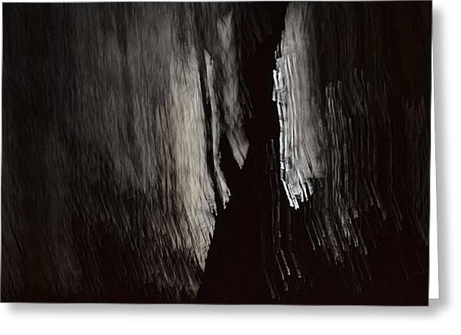 Into The Dark  Greeting Card by Nadalyn Larsen