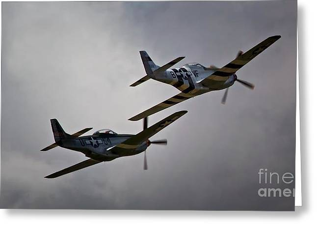 Into The Fight Together 2011 P-51 Mustangs At Chino Air Show Greeting Card