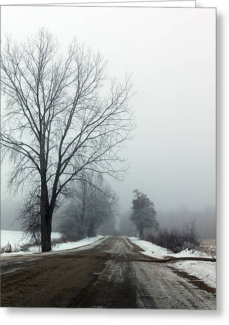 Into The Fog Greeting Card by Cathy  Beharriell