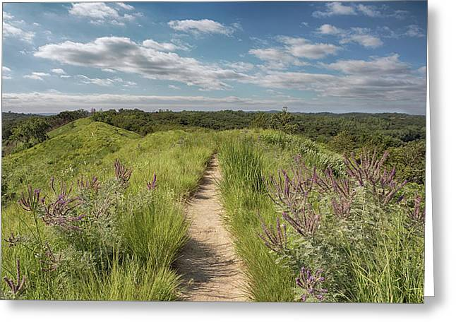 Greeting Card featuring the photograph Into The Loess Hills by Susan Rissi Tregoning