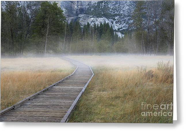 Greeting Card featuring the photograph Into The Mist by Sandra Bronstein