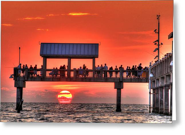 St Petersburg Florida Greeting Cards - Into The Sea Greeting Card by Scott Mahon