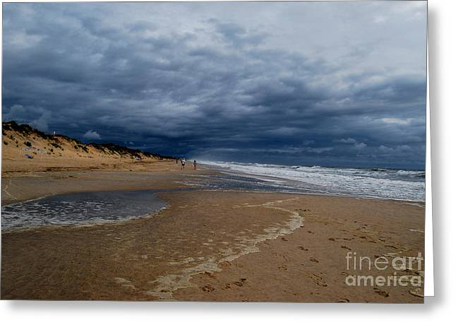 Into The Storm Greeting Card by Linda Mesibov