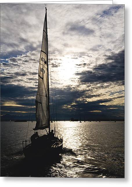 Into The Sunset Greeting Card by Tom Dowd