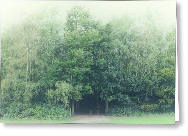 Into The Woods Greeting Card by Martin Newman