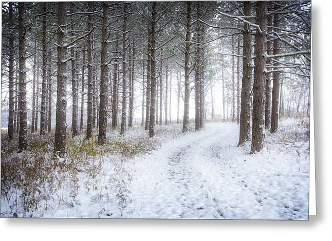 Into The Woods - Winter At Retzer Nature Center  Greeting Card