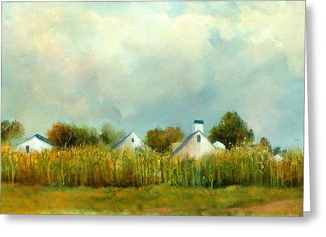 Iowa Cornfields Greeting Card by Sally Seago