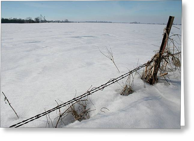 Iowa Frozen Fence Greeting Card