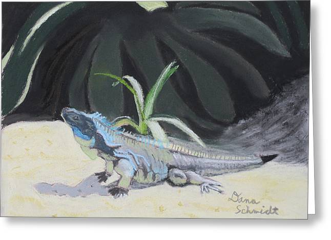 Iquana Lizard At Sarasota Jungle Greeting Card