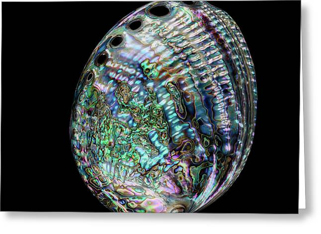 Greeting Card featuring the photograph Iridescence On The Half-shell by Rikk Flohr