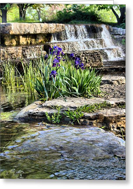 Greeting Card featuring the photograph  Iris 1315hdr by Brian Gryphon
