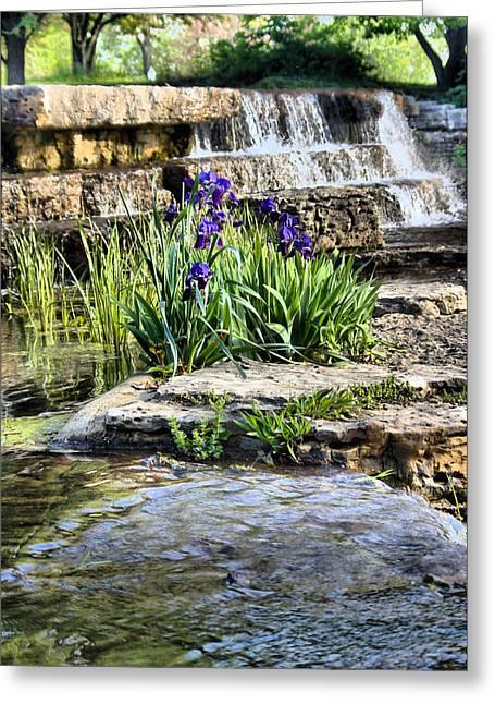 Iris 1315hdr Greeting Card