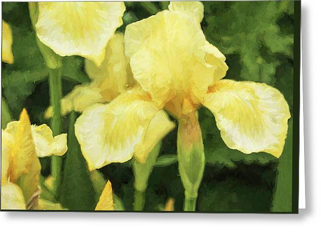 Iris A La Van Gogh Greeting Card