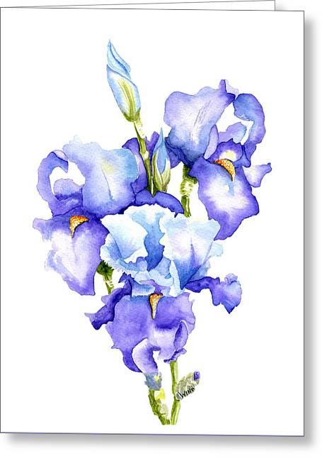 Iris Blooms Greeting Card