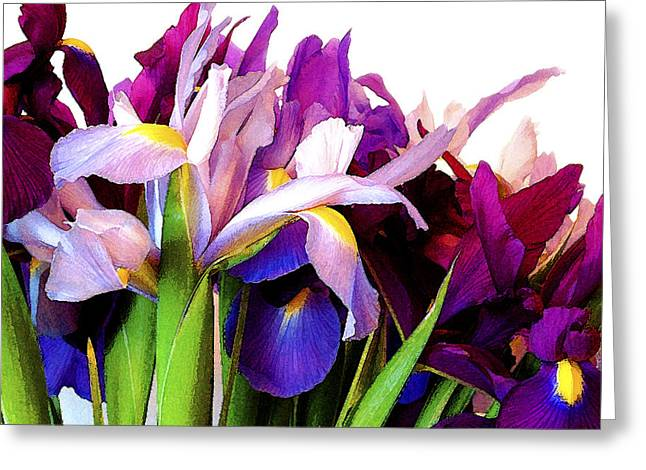 Iris Bouquet Greeting Card by Janis Nussbaum Senungetuk