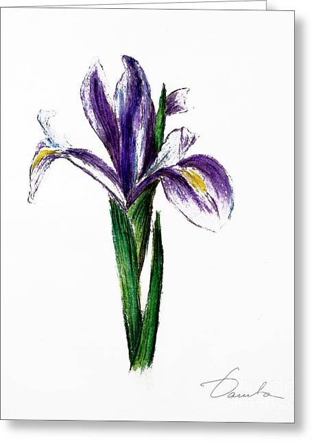 Iris Greeting Card by Danuta Bennett