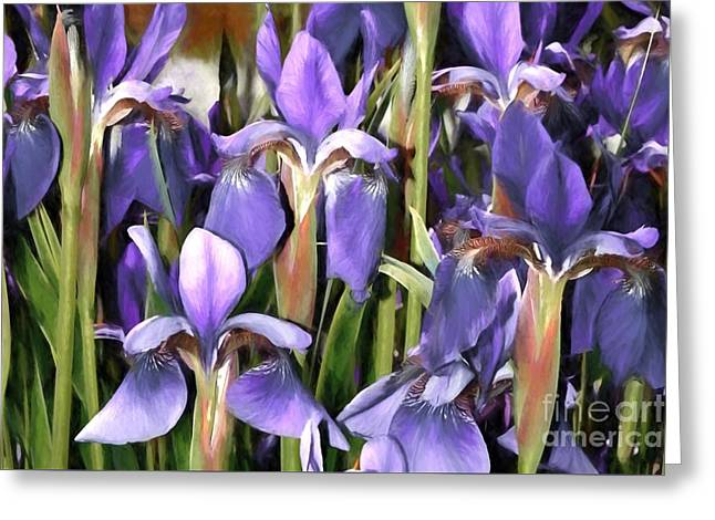 Greeting Card featuring the photograph Iris Fantasy by Benanne Stiens