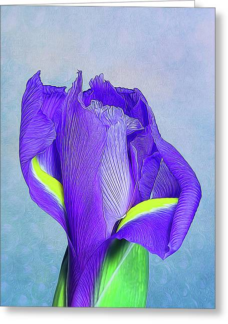 Iris Flower Greeting Card by Tom Mc Nemar
