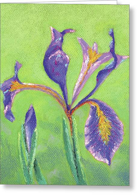 Iris For Iris Greeting Card by Anne Katzeff