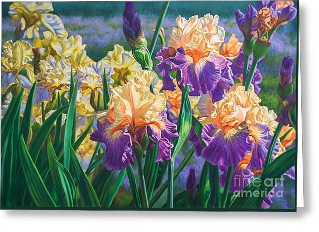 Iris Garden 1 Greeting Card