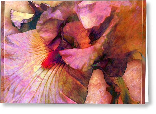 Iris IIi Greeting Card