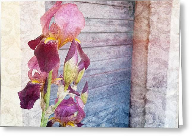 Iris In A Doorway Greeting Card
