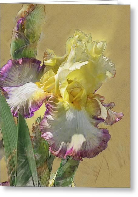 Iris, 'kiss Of Kisses' Greeting Card