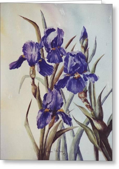 Iris Greeting Card by Lynne Parker