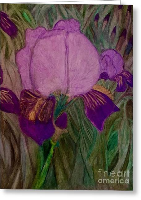Iris - Magic Man. Greeting Card