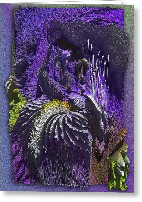 Iris Mountain Greeting Card by Eugenia Martini-Jarrett