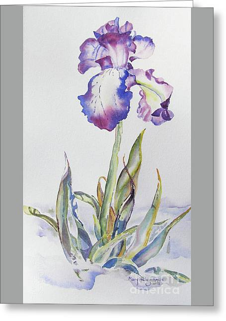Greeting Card featuring the painting Iris Passion by Mary Haley-Rocks
