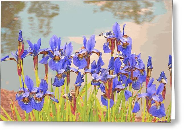 Greeting Card featuring the digital art Iris Pondside 39m by Brian Gryphon
