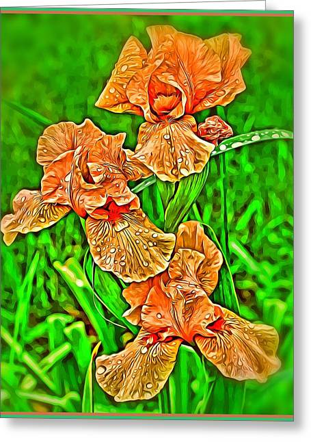 Iris Spring Greeting Card by Mindy Newman