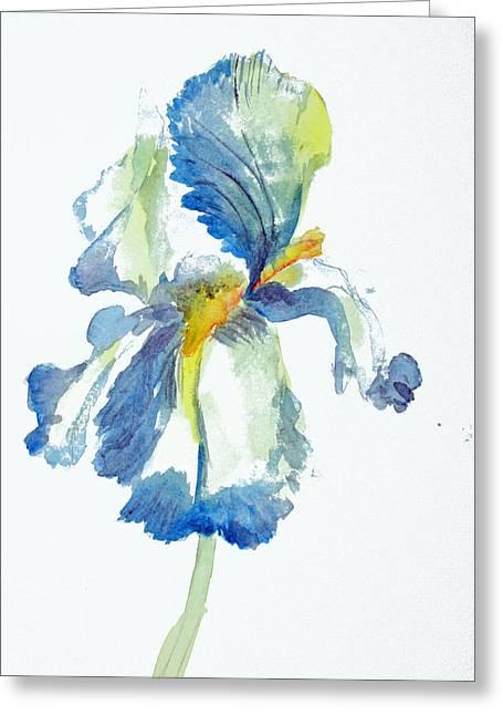 Iris Greeting Card by Tina Storey
