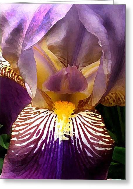 Iris  Greeting Card by Valerie  Moore