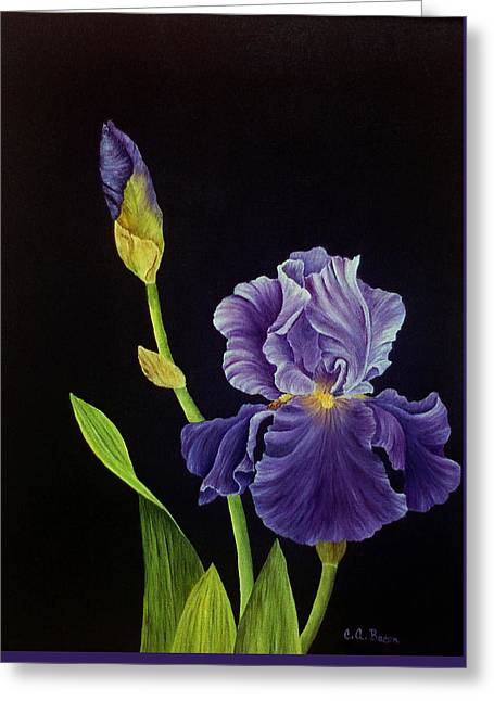 Iris With Purple Ruffles Greeting Card
