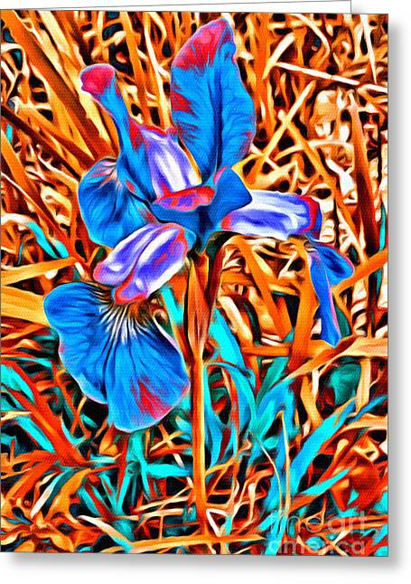 Iris Wow Greeting Card