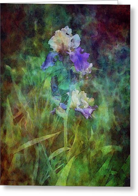 Irises 6618 Idp_3 Greeting Card
