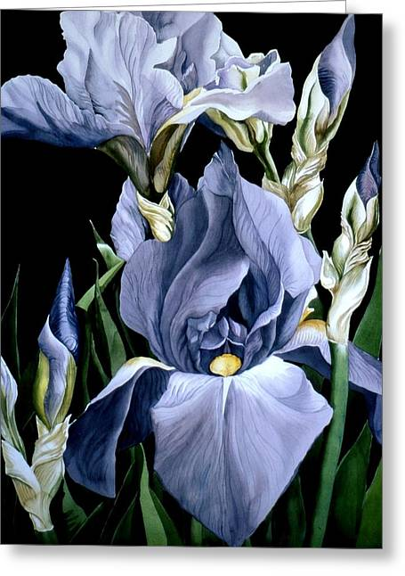 Irises In Blue Greeting Card by Alfred Ng