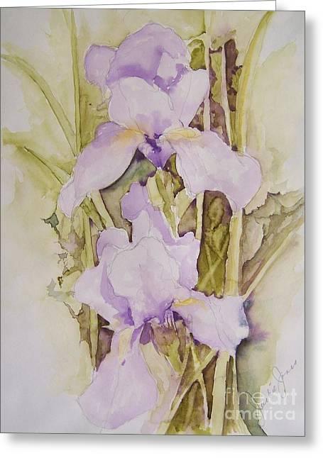 Irises Greeting Card by Jackie Mueller-Jones