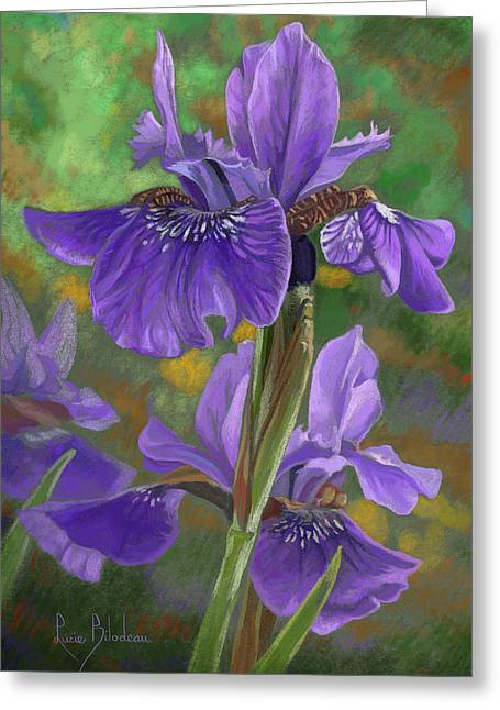 Irises Greeting Card by Lucie Bilodeau