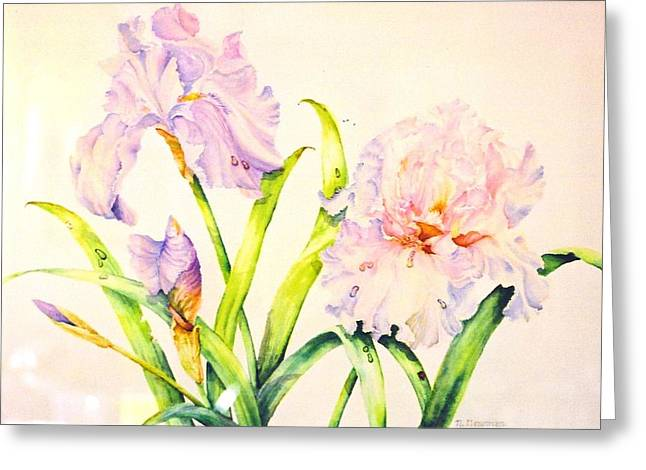 Irises Greeting Card by Nancy Newman
