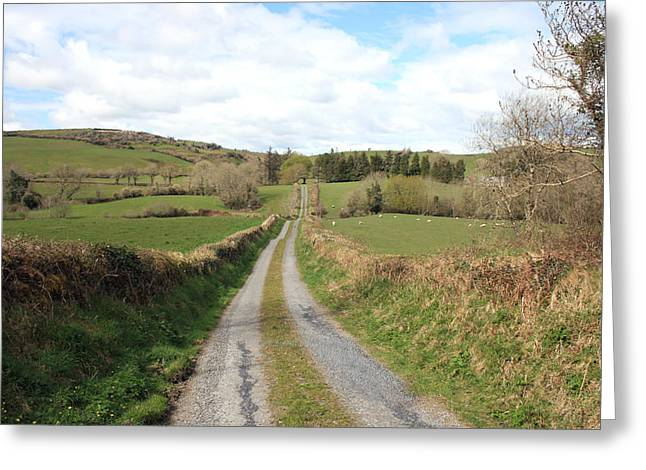Irish Country Road Greeting Card by John Quinn