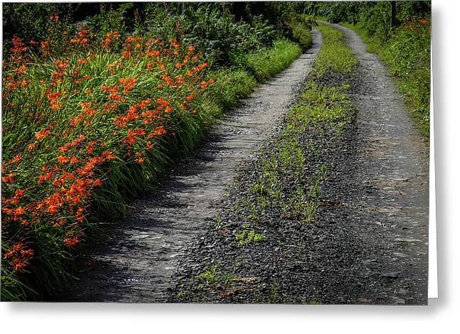Greeting Card featuring the photograph Irish Country Road Lined With Wildflowers by James Truett